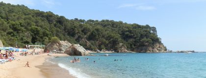 Beach at Platja Canyelles